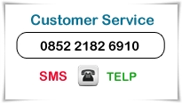 customer-service-ace-maxs